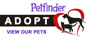 Petfinder graphic that links to Pocatello's available pet adoptions