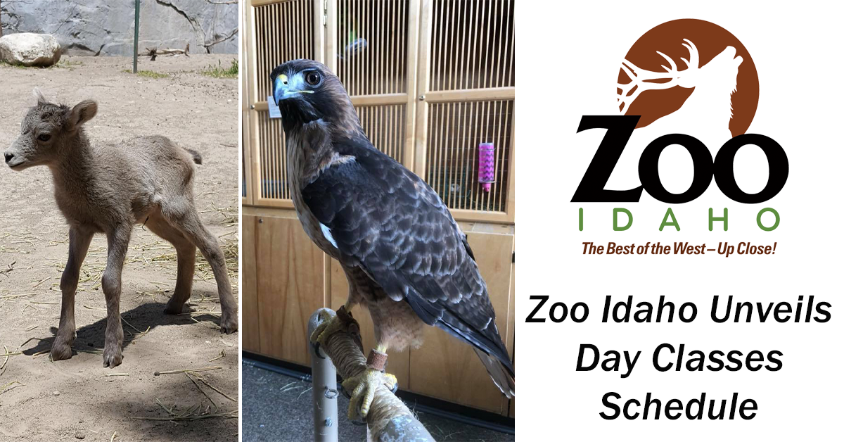 ZooDayClasses2018