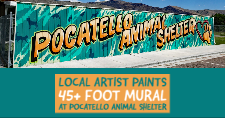 The new mural on the dog run at the Pocatello Animal Shelter